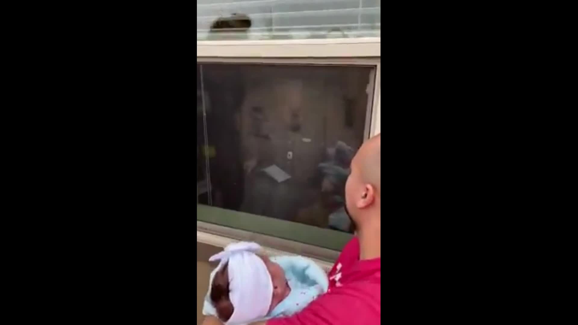 Great Grandfather Meets Newborn Granddaughter Through Window In
